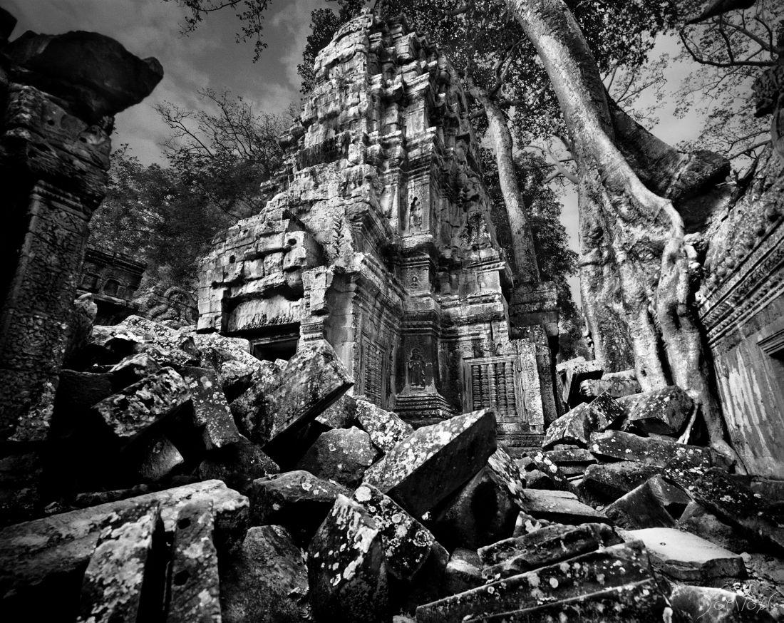 Ta Prohm II Angkor Cambodge