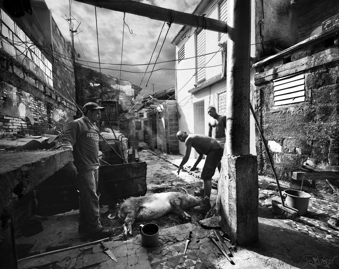 Dans La Cour Cienfuegos Cuba
