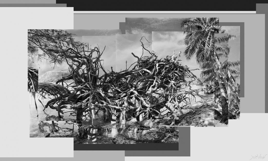 Racines Bora Bora