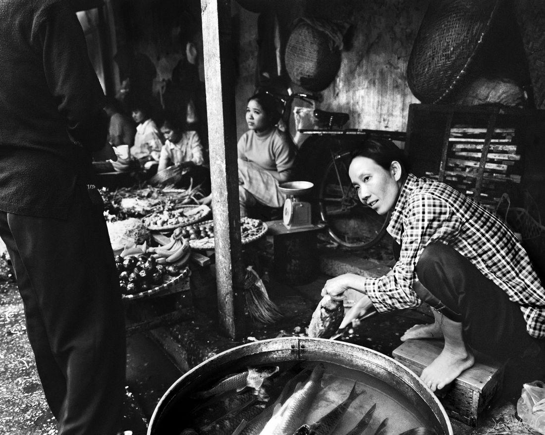 Poissons Hoi An Vietnam
