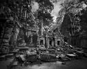 Ta Prohm I Angkor Cambodge