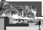 Le Peintre Est Son Motif Jardin des tuileries Paris
