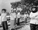 Sept Femmes Baie D Along Terrestre Vietnam